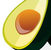 Aguacate_solo