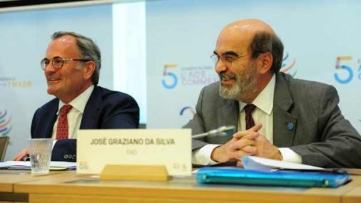 FAO DESTACA ROL DEL COMERCIO EN LA SEGURIDAD ALIMENTARIA